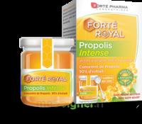 Forte Pharma Propolis Intense Gelée Pot/40g à BOLLÈNE