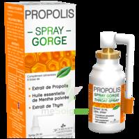 3 Chenes Propolis Spray Gorge Fl/25ml à BOLLÈNE