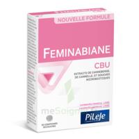 Pileje Feminabiane Cbu 30 Comprimés Bicouches à BOLLÈNE
