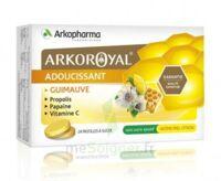 Arkoroyal Propolis Pastilles Adoucissante Gorge Guimauve Miel Citron B/24 à BOLLÈNE