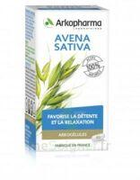 Arkogélules Avena Sativa Gélules Fl/45 à BOLLÈNE