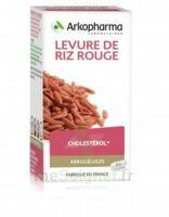 Arkogélules Levure De Riz Rouge Gélules Fl/45 à BOLLÈNE