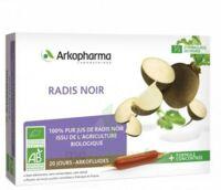 Arkofluide Bio Ultraextract Radis Noir Solution Buvable 20 Ampoules/10ml à BOLLÈNE
