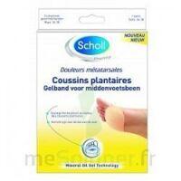 Scholl Coussin Plantaire Douleurs Métatarsales T2 à BOLLÈNE