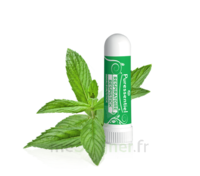 Puressentiel Respiratoire Inhaleur Respiratoire Aux 19 Huiles Essentielles - 1 Ml à BOLLÈNE