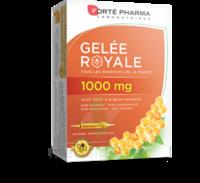 Forte Pharma Gelée Royale 1000 Mg Solution Buvable 20 Ampoules/10ml à BOLLÈNE