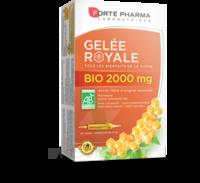 Forte Pharma Gelée Royale Bio 2000 Mg Solution Buvable 20 Ampoules/15ml à BOLLÈNE