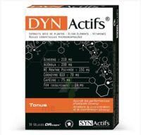 Synactifs Dynactifs Gélules B/30 à BOLLÈNE