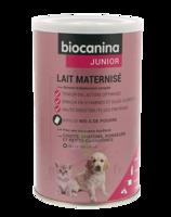 Biocanina Lait Poudre Maternisé B/400g à BOLLÈNE