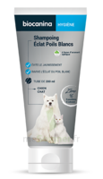 Biocanina Shampooing éclat Poils Blancs 200ml à BOLLÈNE