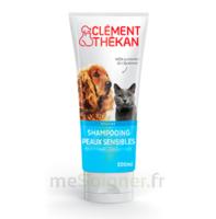 Clément Thékan Shampooing Peaux Sensibles T/200ml à BOLLÈNE