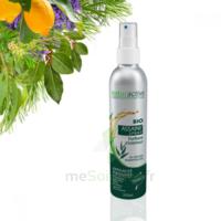Naturactive Assaini'spray 200ml à BOLLÈNE