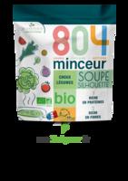 804® Minceur Soupe Silhouette Bio Sachet/180g à BOLLÈNE